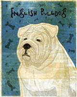 English Bulldog Fine-Art Print