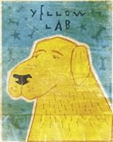 Lab (yellow) Fine-Art Print