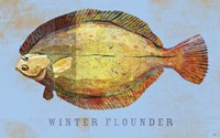 Winter Flounder Fine-Art Print