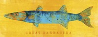 Great Barracuda Fine-Art Print