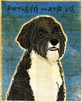Portuguese Water Dog Fine-Art Print