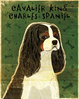 Cavalier King Charles (tri-color) Fine-Art Print