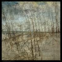 Masonboro Island No. 6 Fine-Art Print