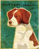 Brittany Spaniel Fine-Art Print