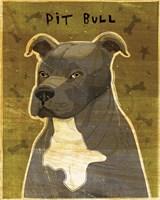 Pit Bull (Gray) Fine-Art Print