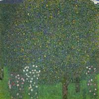 Roses Under The Trees, 1918 Fine-Art Print