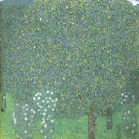Roses Under The Trees,  c. 1905 Fine-Art Print