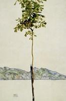 Horse Chestnut Tree, Lake Constance. 1912 Fine-Art Print