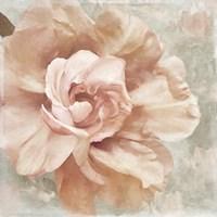 Petals Impasto I Fine-Art Print