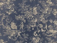 Toile Fabrics II Fine-Art Print