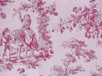 Toile Fabrics IV Fine-Art Print