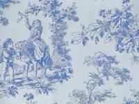 Toile Fabrics V Fine-Art Print