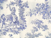Toile Fabrics VI Fine-Art Print