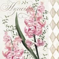 Hyacinth I Fine-Art Print