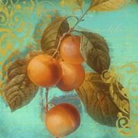 Glowing Fruits I Fine-Art Print