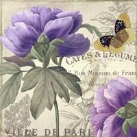Petals of Paris IV Fine-Art Print