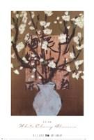 White Cherry Blossoms Fine-Art Print