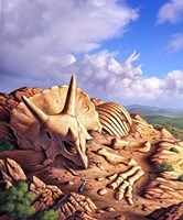 Bones of a Triceratops Fine-Art Print
