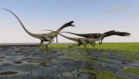 Group of Coelophysis Dinosaurs Fine-Art Print