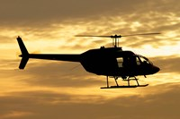 Bell 206 utility helicopter Fine-Art Print