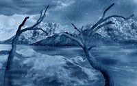 Snow Covered Landscape Fine-Art Print