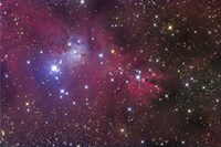 The Cone Nebula Fine-Art Print