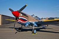 Curtiss P-40E Warhawk Fine-Art Print