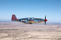 TP-51C Mustang Fine-Art Print