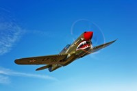 A P-40E Warhawk Fine-Art Print