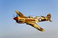 P-40N Warhawk Fine-Art Print