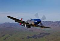 A P-51D Mustang 2 Fine-Art Print