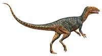 Gojirasaurus Fine-Art Print