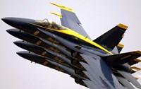 Four Blue Angels F/A-18C Hornets Fine-Art Print