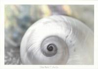 Pearl Lite Fine-Art Print