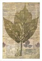 Harvest III Fine-Art Print