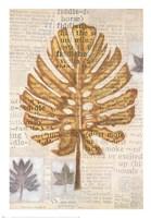 Harvest IV Fine-Art Print