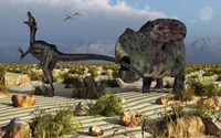 Protoceratops Biting a Velociraptor Fine-Art Print