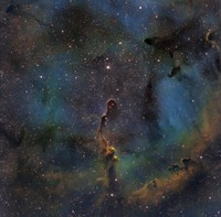 IC 1396, the Elephant Trunk Nebula Fine-Art Print