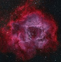 The Rosette Nebula Fine-Art Print