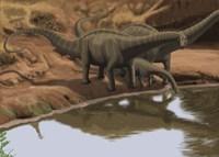 Apatosaurus Dinosaurs Fine-Art Print