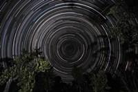 Southern Sky Star Trails Fine-Art Print