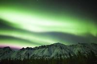 Bright Aurora Borealis over Annie Lake Fine-Art Print
