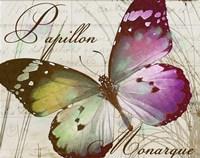 Papillon II Fine-Art Print