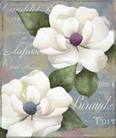 Southern Charms Fine-Art Print