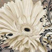 Winter White I Fine-Art Print