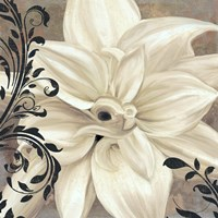 Winter White II Fine-Art Print