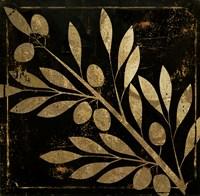 Bellissima I Fine-Art Print
