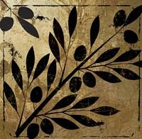 Bellissima II Fine-Art Print