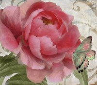 Apricot Peonies II Fine-Art Print