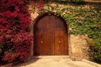 Doorway at Consolat de Mar, Palma de Mallorca, Balearics, Spain Fine-Art Print